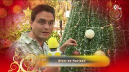 Morris: ¿Qué significa el árbol de navidad?