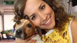 """Capítulo 60: Adoptar un perro le cambia la vida en """"Perro de buena raza hasta la muerte caza"""""""