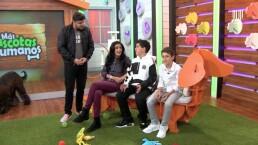 Bárbara Torres junto a sus hijos y sus 'perrhijos' asisten a 'MMQH'