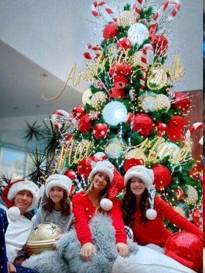 El espíritu decembrino se ha colado a las casas de algunos famosos que ya han presumido los impresionantes árboles de Navidad que colocaron en sus hogares