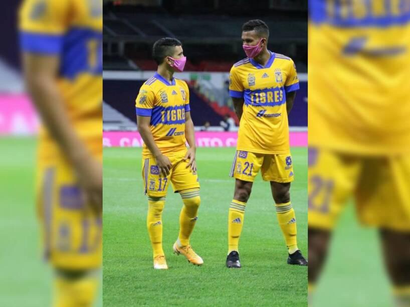 Tigres Cubrebocas Rosas (4).jpg