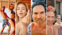 Estos son los videos de Angelique Boyer y Sebastián Rulli con los que conquistaron Tik Tok