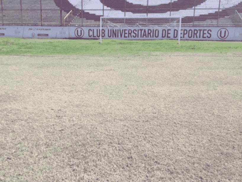 7 Estadio monumental.png
