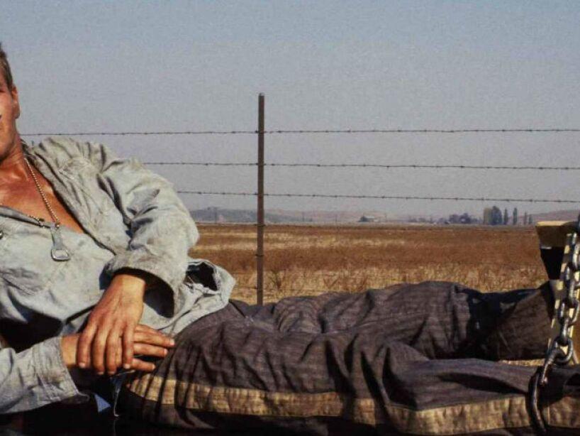 4. Paul Newman: Con 10,005,000 dólares creó una beca para el Kenyon Collage, su alma mater en Ohio.