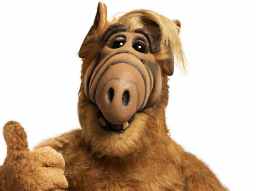Alf: Totalmente diferente a lo que estamos acostumbrados; este peludo, chaparrito y trompudo alíen arrancó risas en los ochentas.