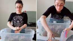 Violeta Isfel presume cómo prepara las hamburguesas que vende para su nuevo negocio