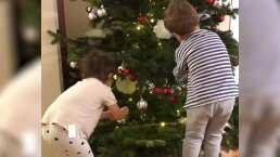 Los mellizos de Ludwika Paleta decoran su árbol de Navidad y este es el impresionante resultado