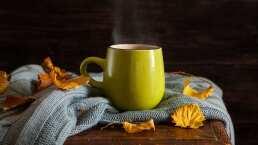Efectivo té nocturno para quemar la grasa
