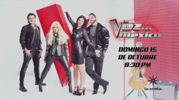 Yuri, Carlos Vives, Laura Pausini y Maluma quieren tu voz