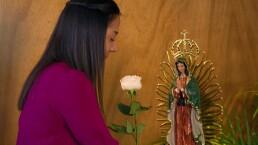 ¡Nuevo horario de La Rosa de Guadalupe!