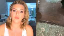 """Alicia Machado muestra cómo quedó su bodega tras ser saqueada: """"Se llevaron mucha mercancía"""""""
