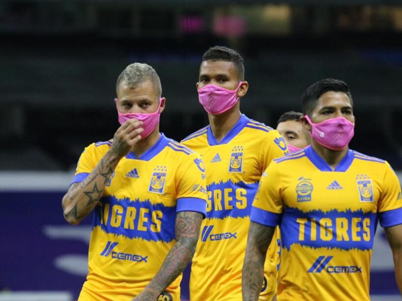 Tigres Cubrebocas Rosas (3).jpg