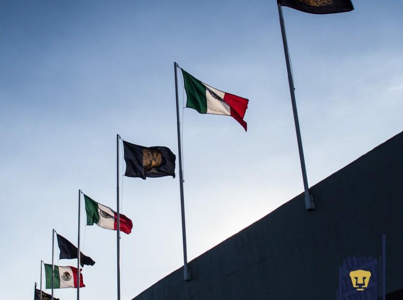 6 pumas dia de la bandera.jpg