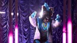 Estas son las siguientes pistas de Cebra en ¿Quién es la Máscara?