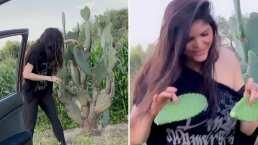 '¡Soy ranchera!': Ana Bárbara se pone a cortar nopales en medio de la carretera