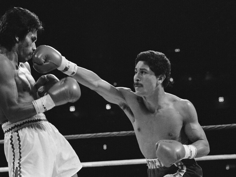 Gomez Pintor Boxing