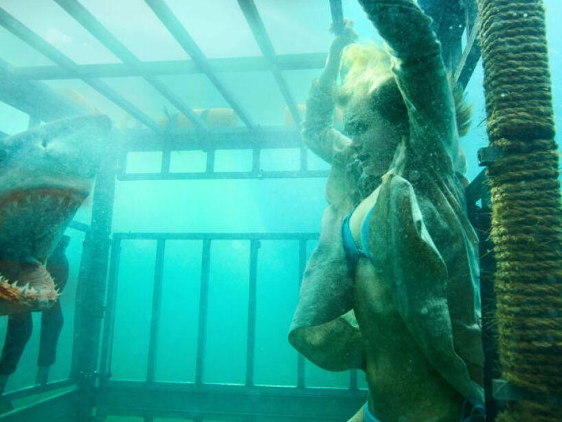 En el 2011 los tiburones regresaron en 3D a la pantalla grande con Shark Night.