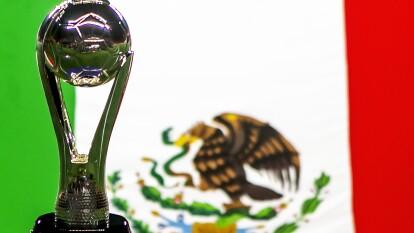 Hasta el momento se han disputado 47 torneos cortos en la historia de los torneos de Liga del futbol mexicano.