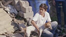 Matan al perro de Pepito y después quieren violarlo