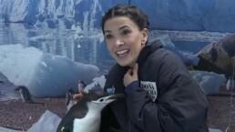 """""""Me perdieron la confianza los pájaros"""": Dalilah Polanco trabajó con pingüinos"""