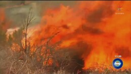 Feroz incendio en California