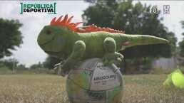 'Las Iguanas Verdes', una escuela de futbol que ayuda en Culiacán