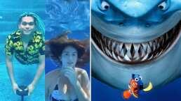 Desde el fondo de sus albercas, tiktokers recrean épicas escenas de 'Buscando a Nemo'
