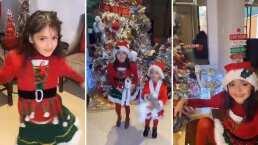 Desde osos polares hasta enormes esferas, así luce el árbol de Navidad de Marisol González