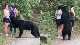 Oso se pone cariñoso con una turista en Monterrey, ella aprovecha y se toma una selfie