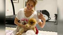 'Qué cosa más hermosa': Thalía llena de amor a sus mascotas mientras hace ejercicio