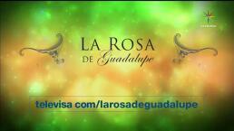 La rosa de Guadalupe celebra mil programas al aire