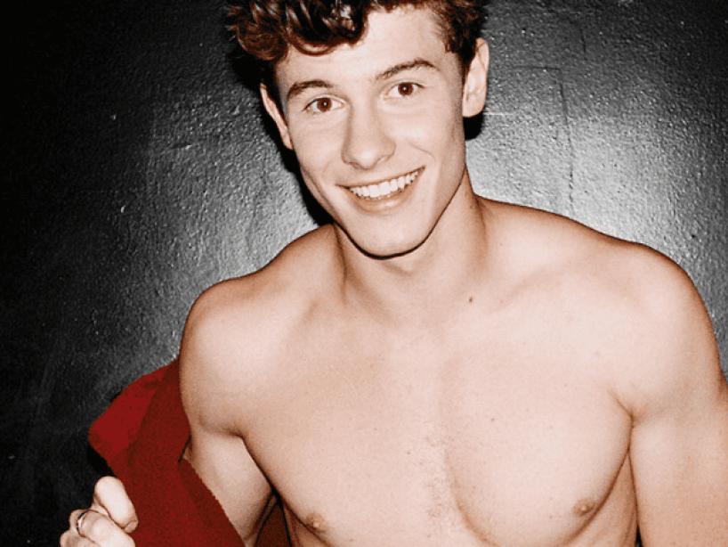 Shawn Mendes posa en ropa interior
