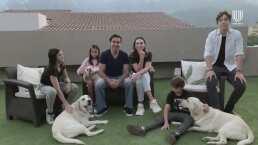 Ernesto D'Alessio y su familia presentan a sus tres mascotas: Lex, Spider y Lola