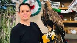 El águila real es el símbolo por excelencia de nuestra bandera mexicana