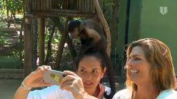 Montserrat Oliver y Yolanda Andrade visitan el santuario de monos Akumal