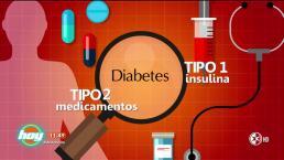 Tutorial: Todo lo que tienes que saber acerca de la insulina