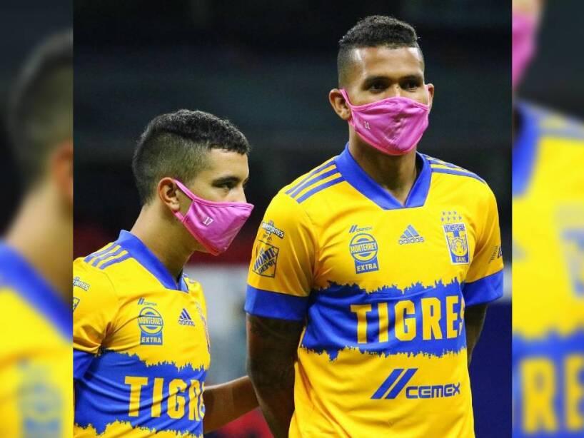 Tigres Cubrebocas Rosas (1).jpg