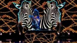 """Cebra canta """"Get lucky"""" en el penúltimo episodio de ¿Quién es la Máscara?"""