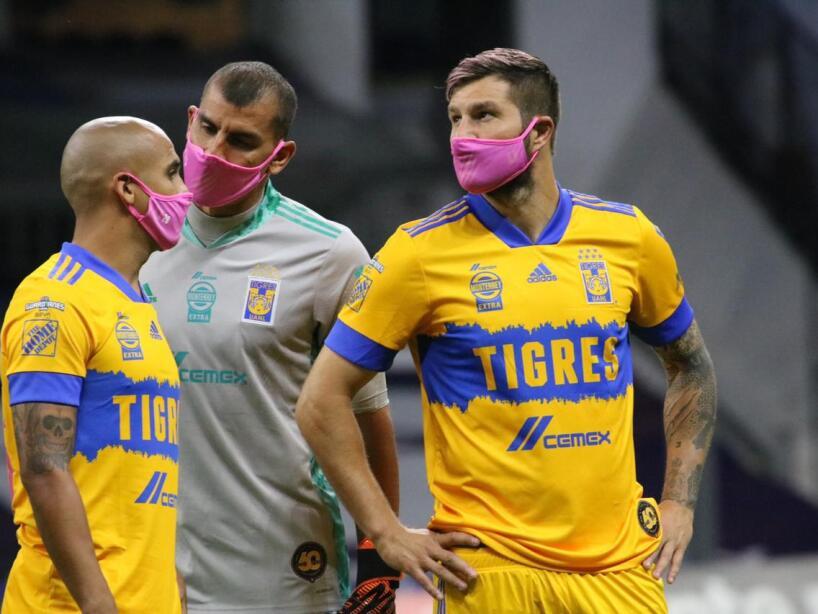 Tigres Cubrebocas Rosas (2).jpg