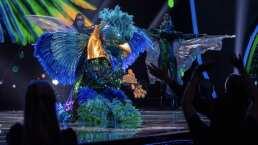Al ritmo de Gloria Trevi, Quetzal abre sus alas para cantar 'Cinco Minutos'