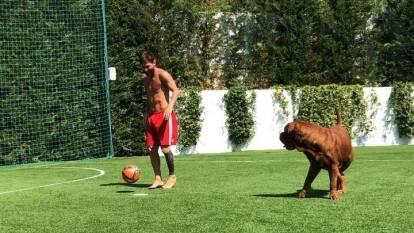 Leo Messi tiene una pequeña cancha de futbol para jugar con sus hijos y su mascota.