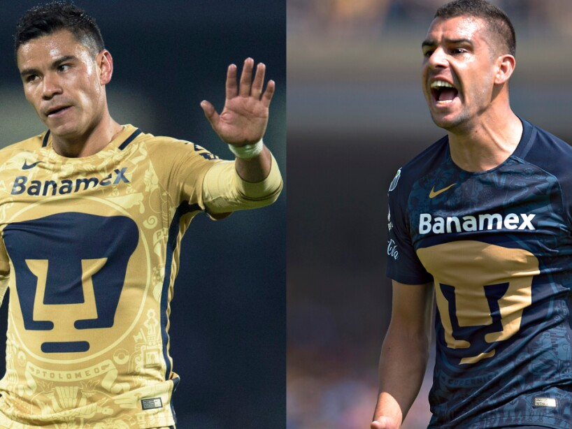 Pumas 2016.jpg
