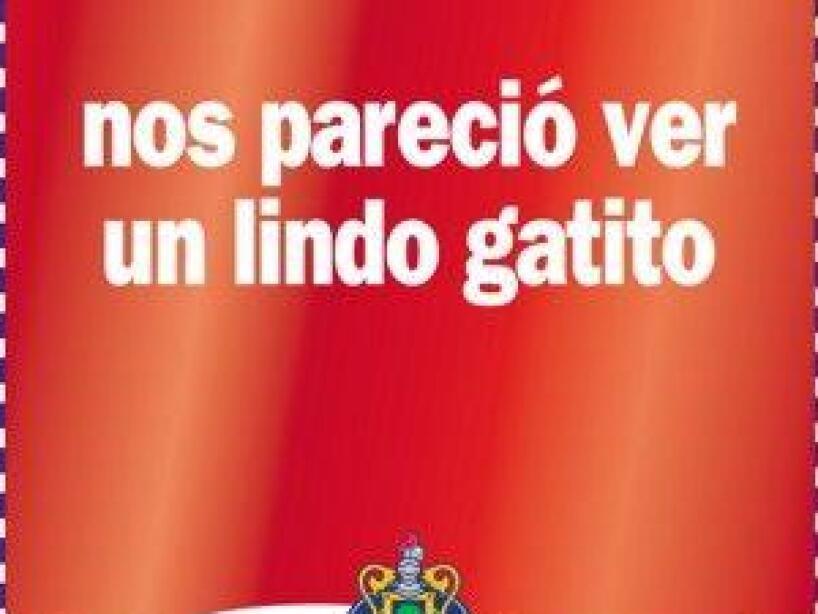 Jorge Vergara 8.jpeg