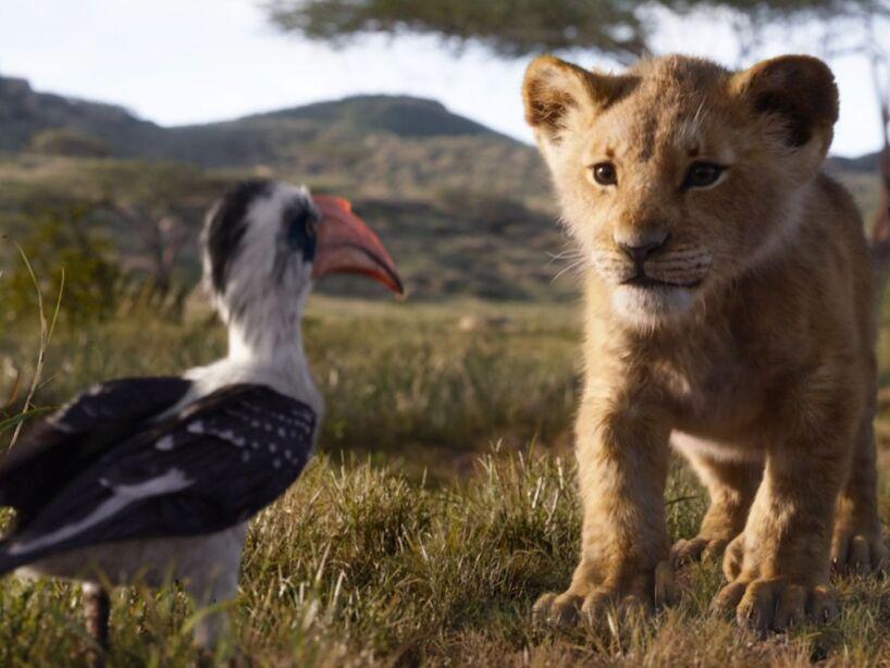el rey leon.jpg