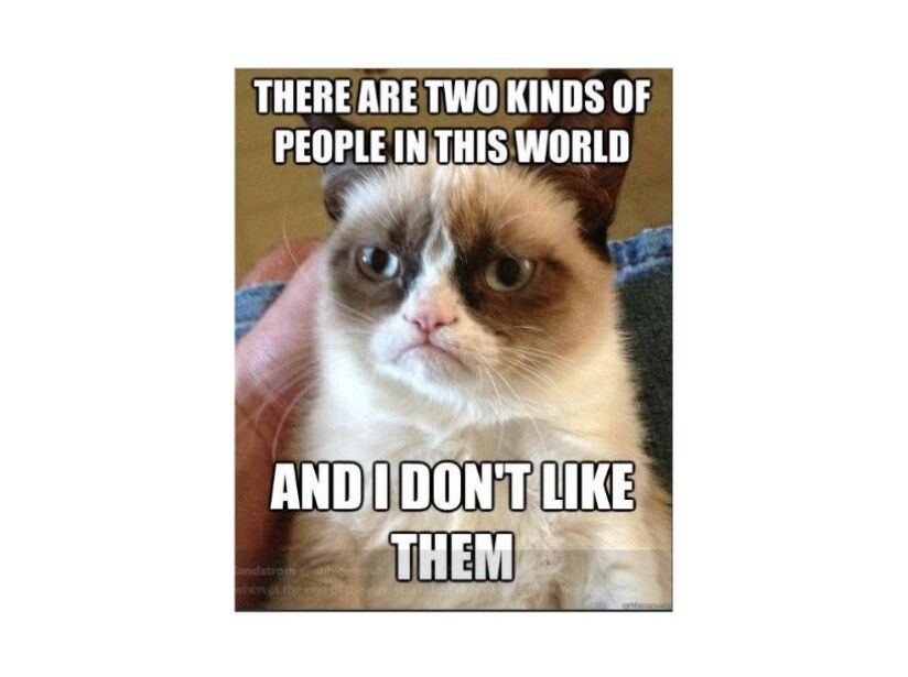 Muere Grumpy Cat, la gatita más enojona