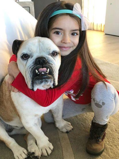 Alessandra Rosaldo celebró el Día Mundial del Perro con tiernas fotos de Aitana Derbez con su mascota Fiona, que recibió halagons por parte de los seguidores de la cantante.