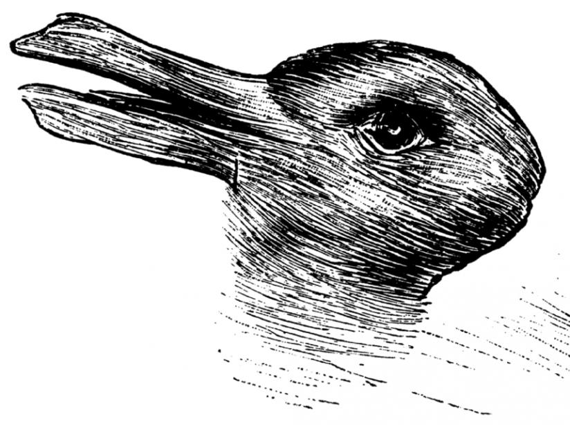 Las ilusiones ópticas más confusas y virales del Internet