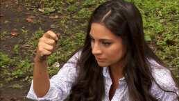 Resumen Capítulo 19: Paula cree que Rogelio mandó matar a Gustavo