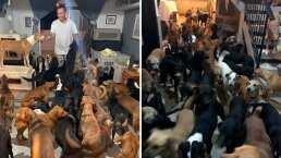 Este hombre resguardó a 300 animales en su casa por el huracán 'Delta'