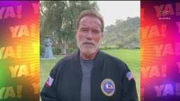 Lasrápidasde Cuéntamelo ya!(Miércoles 20 de mayo): Arnold Schwarzenegger estuvo a punto de morir